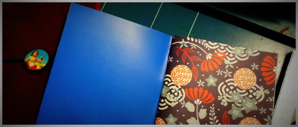 blue_insert_notebook_3